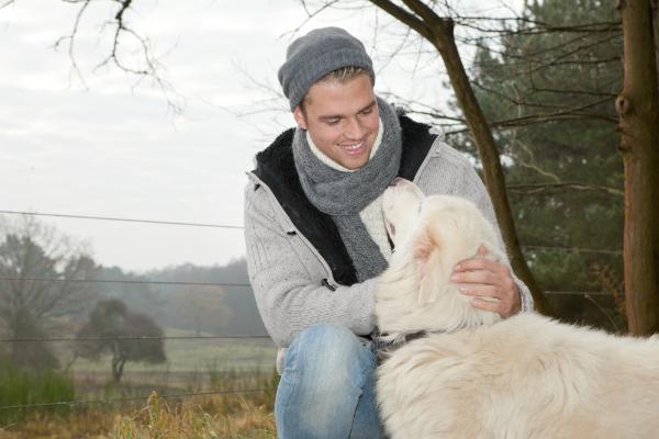 Nach der Aktion des Hundes hat der Besitzer nur ein paar Sekunden Zeit, um dem Tier die Belohnung zu geben