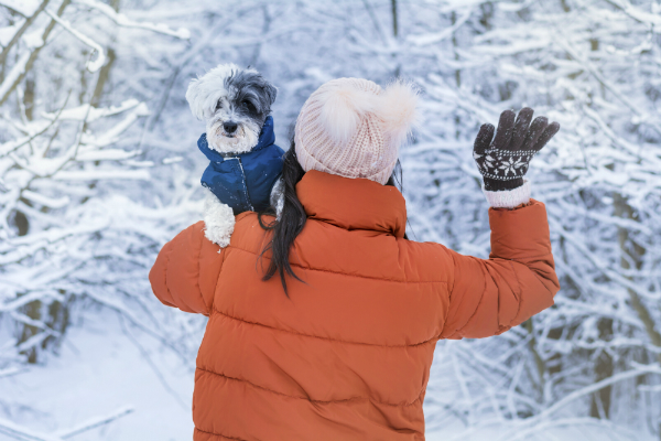 So schuetzen Sie Ihren Hund im Winter vor Kaelte