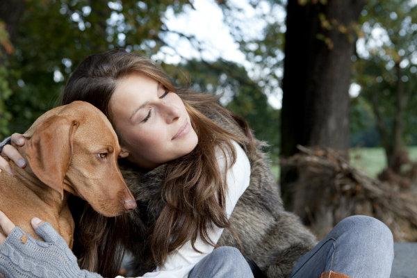Das Immunsystem des Hundes kann bei der Abwehr von Krankheitserregern vom Herrchen oder Frauchen unterstützt werden