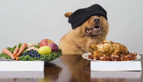 Gemüse oder Fleisch?