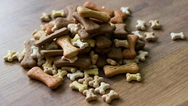 Kausnacks zählen natürlich auch zum täglichen Kalorienbedarf ihres Hundes