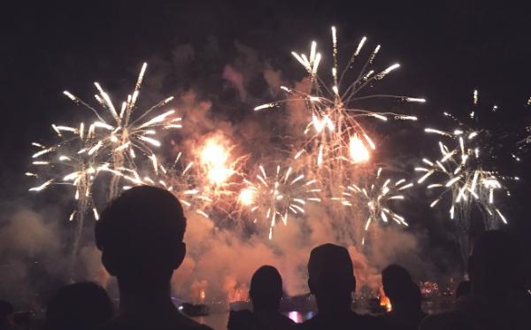 Feuerwerk an Silvester bedeutet für Haustiere Stress pur