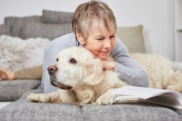 Kollagen sorgt fuer ein glaenzendes Fell beim Hund