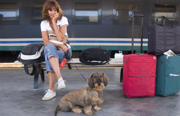 Was ist bei Bahnreisen mit dem Hund zu beachten?