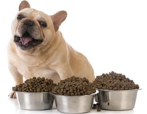 Rentierfleisch ist gut für die Ernährung von Hunden
