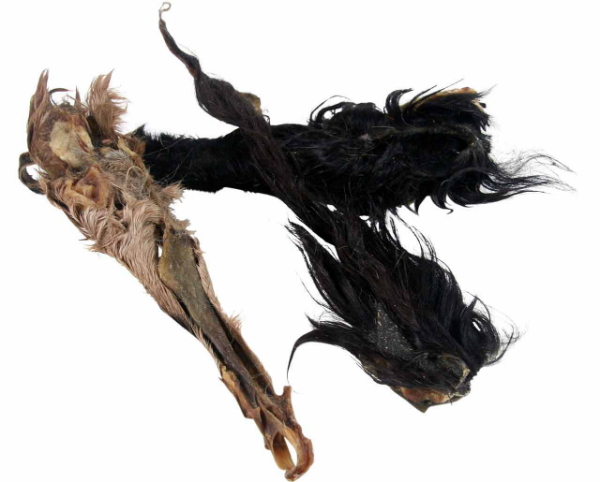 Ziegen-Hautstreifen mit Fell ca.12-15cm