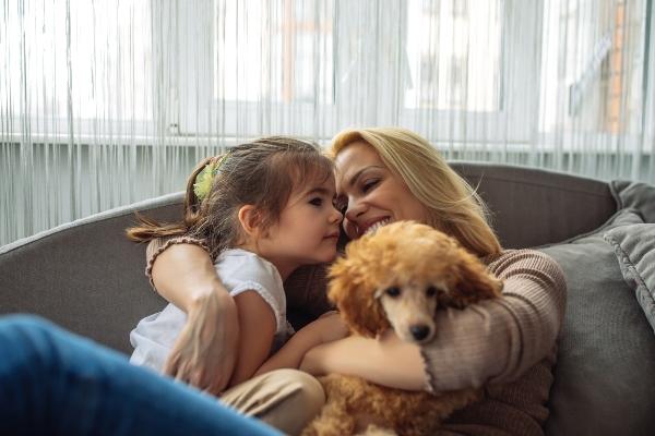 pudel-familienhunde-fuer-anfaenger