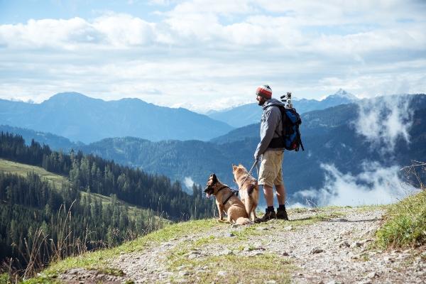 Wanderer mit seinen zwei Hunden im Salzburger Land urlaub-in-den-bergen-mit-hund