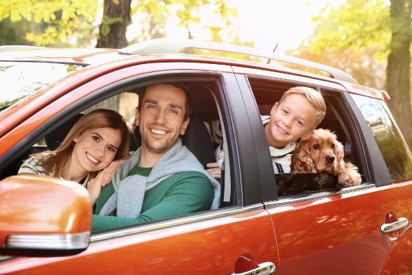 familienurlaub-anreise-hundefreundlich