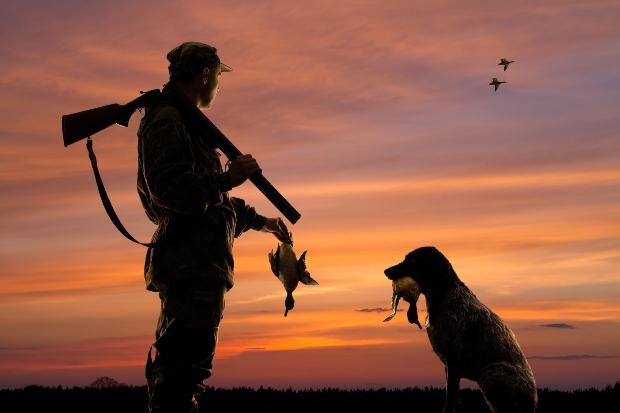 Hund mit Herrechen und gefangenen Enten