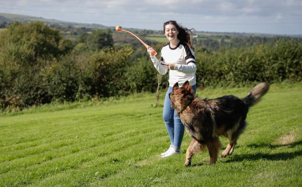 Frau wirft Ball für einen Hund - ideales Beschäftigungsspiel für Hunde