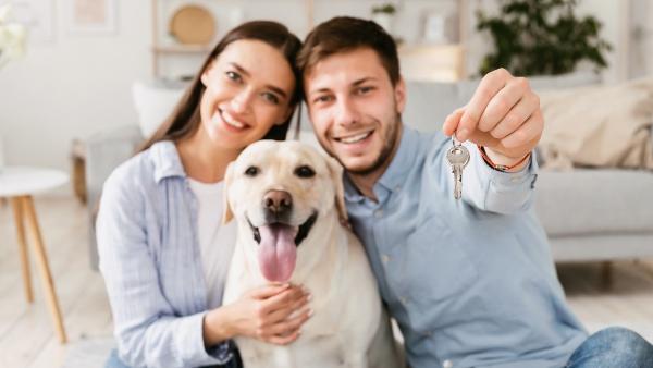 erfolgreiche-wohnungssuche-mit-hund
