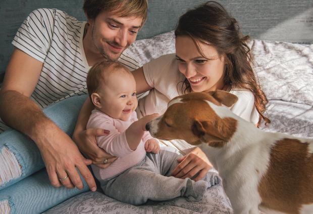 Junge Familie mit Baby und Hund