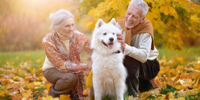Senioren mit einem Hund