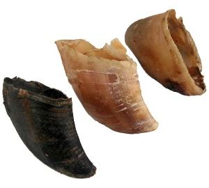 rinderhufe hunde-knabbereien