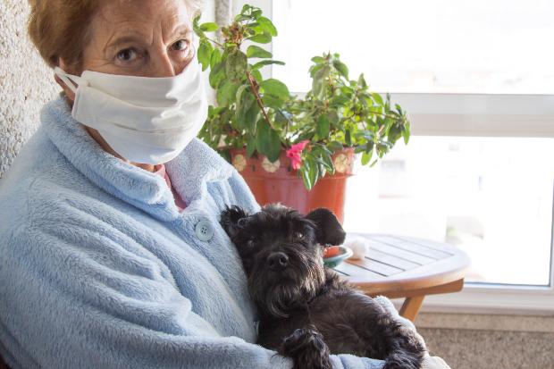 Ältere Dame mit Mundschutz und Hund auf dem Schoß - Corona und Hund