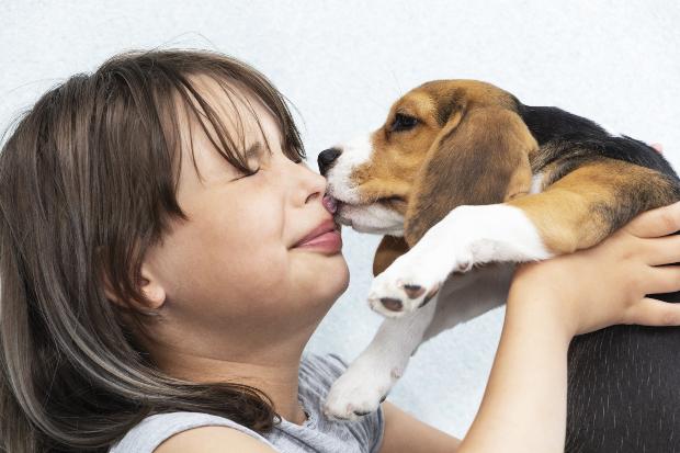 Hund leckt Frauchen im Gesicht - Corona und Hund