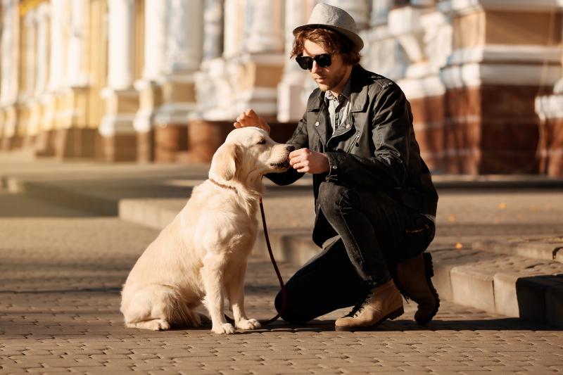 Mann füttert Hund in der Stadt