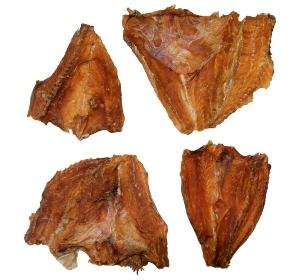 croaker-fisch-trommler