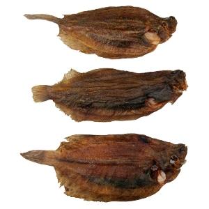 rotzunge-ganze-fische