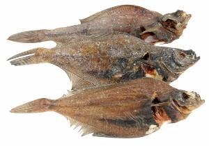 scholle-ganze-fische Fischsnacks für Hunde