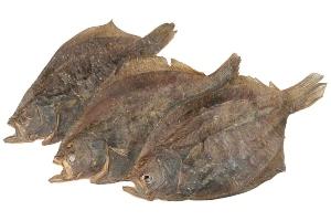 steinbutt-gr-s-m-ganze-fische Fischsnacks für Hunde
