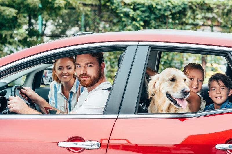 familie mit hund auf dem weg zum freizeitpark