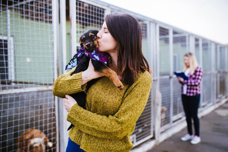 Fellnase aus dem Tierheim aufnehmen Hund kaufen oder adoptieren