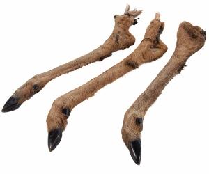 Hirschunterbein mit Fell ca 175-300 gr