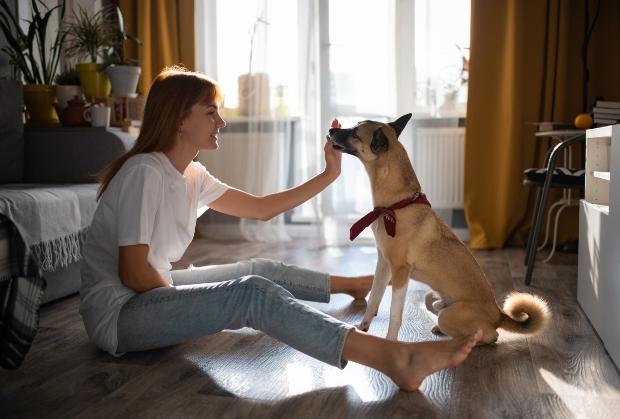 Frau füttert Snack an Hund