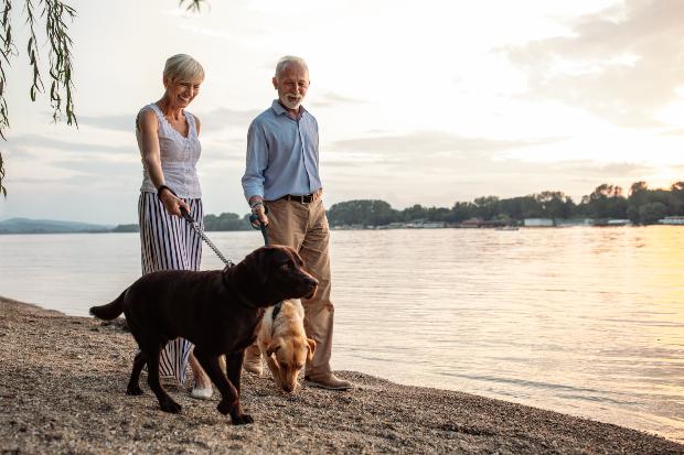 Älteres Paar führt 2 Hunde am See Gassi