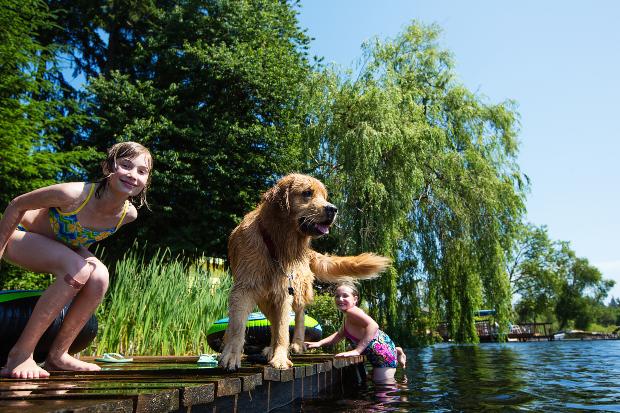 Kinder und Hund am See - Urlaub mit Hund am See