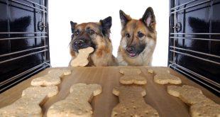 2 Hunde am Backofen - Leckeres Hundebrot