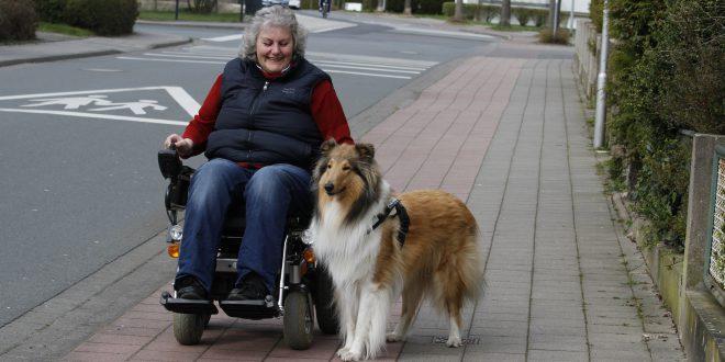 Rollstuhlfahrerin mit Begleithund - Begleithundeprüfung