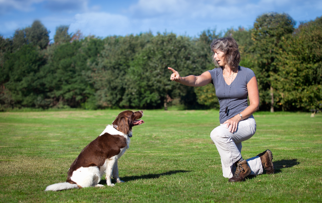 Frau trainiert Hund per Handzeichen