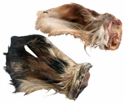 Kalbsohren mit Muschel und Fell
