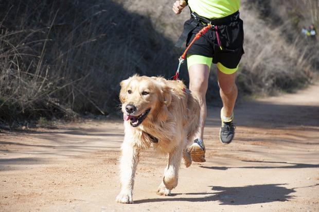 Mann rennt mit seinem Hund