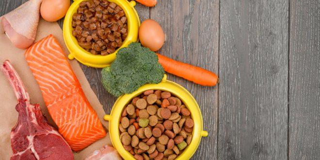 Augewogenen Nahrungsmittel für den Hund - Spurenelemente sind wichtig