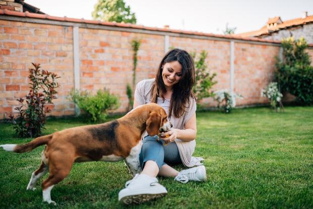 Frauchen füttert Hund im Garten - Spurenelemente sind wichtig für den Hund