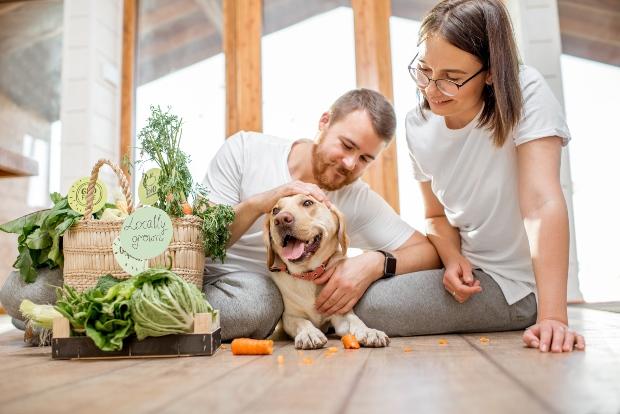 Hund mit Familie, viel frisches Gemüse - ohne Geschmacksverstärker im Hundefutter