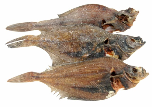 Flunder ganze Fische
