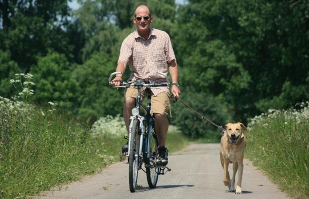 Mann fährt Fahrrad, Hund läuft mit - Kondition beim Hund aufbauen durch Sport