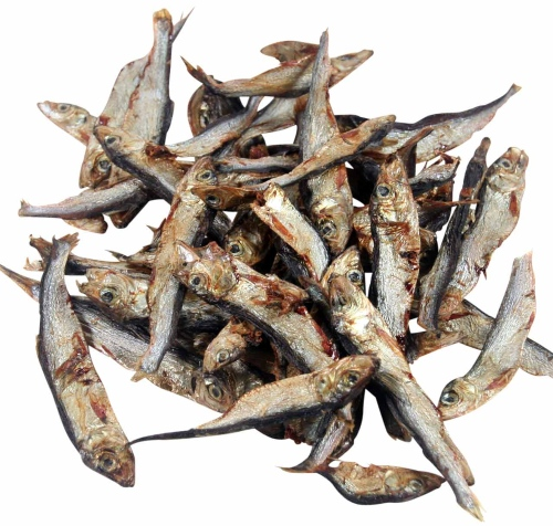 Sprotte klein - ganze Fische