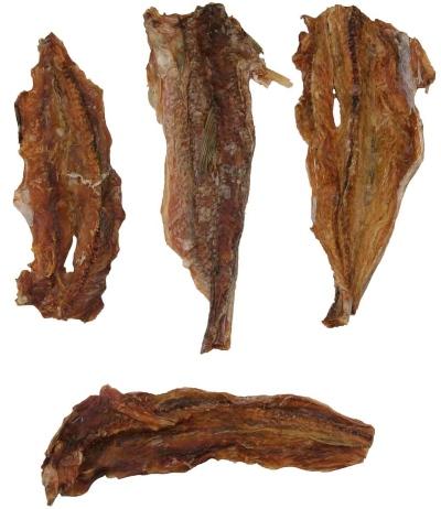 Lizardfisch | Rohprotein: 75,1 % - Eiweiß ist für Hunde