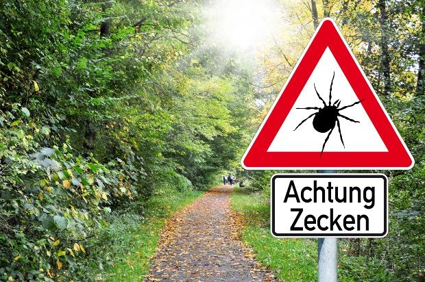 Warnhinweisschild am Waldrand: Achtung Zecken