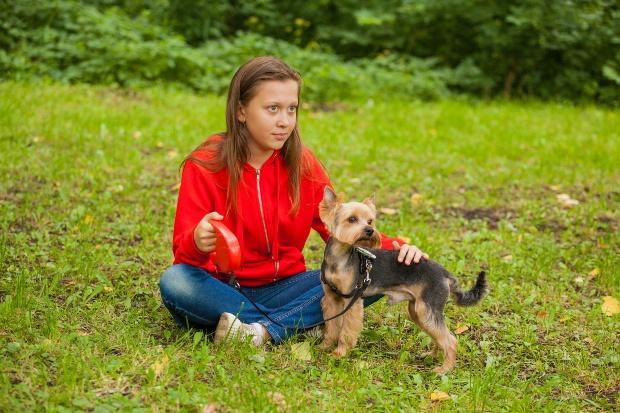Junges Frauchen mit Yorkshire Terrier - Kleinhunde für die Familie