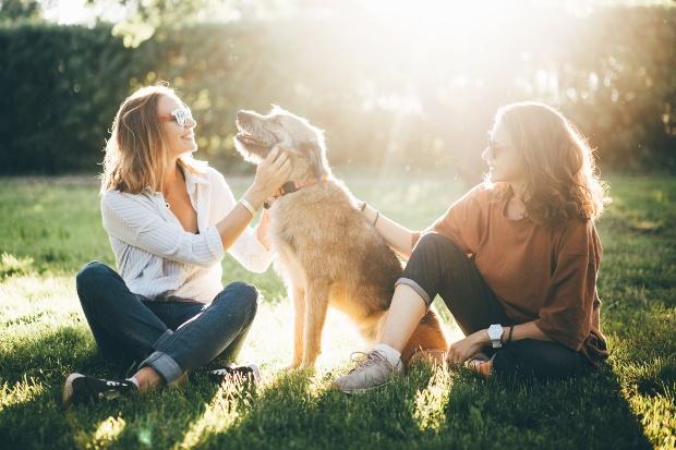 Zwei junge Frauen kümmern sich um einen Hund - Dogsharing