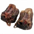 Ganze-Rindernasenknochen