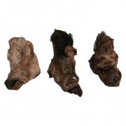 Kamelohren mit Ohrmuschel und Fell