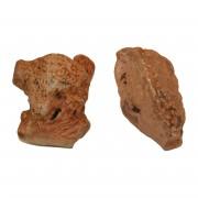 Kauwurzel (Heidebaumwurzel)-Gr.M